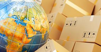mezinarodní stěhování